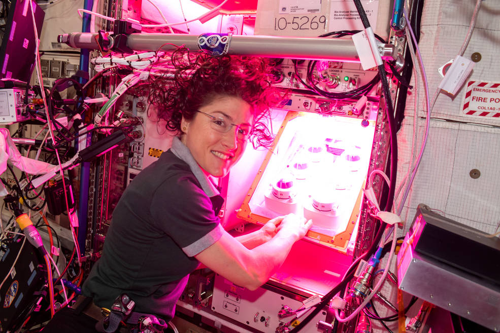 NASA Testing Method to Grow Bigger Plants in Space - Jaime Bonetti Zeller